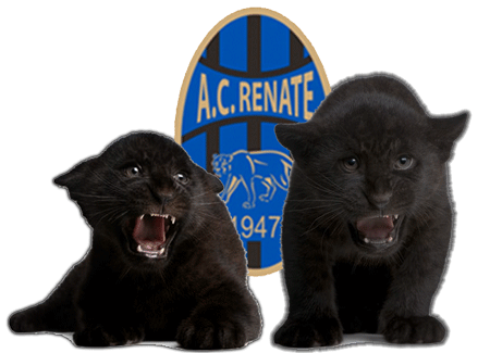 Logo AC Renate Giovani