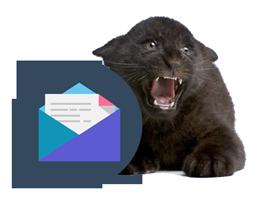 newsletter-pantera