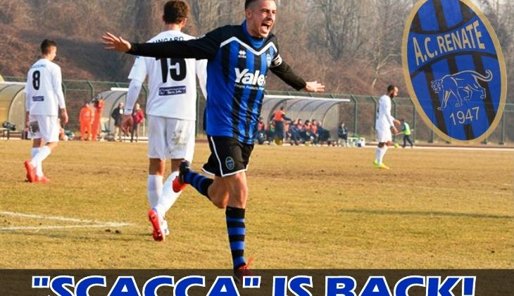 SCACCA IS BACK